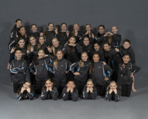 2018-2019 RSDS Competition Team